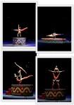 Ringling Bros Circus2