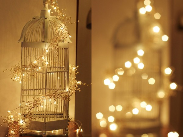 Christmas Red & Birdcage
