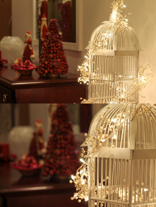 Christmas Red & Birdcage1