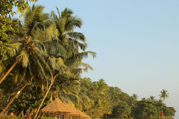 Cidade de Goa-58